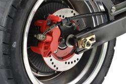 Citycoco Harleyroller Scooter Motorroller e-Scooter Elektroroller e-Thor Dayi Motor Colibri e-Thor  E-thor3.0A 3000 3 Kw Motorleistung