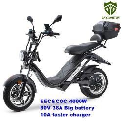 Citycoco Harleyroller Scooter Motorroller e-Scooter Elektroroller e-Thor Dayi Motor Colibri E-thor 5.0C 4 Kw Motorleistung